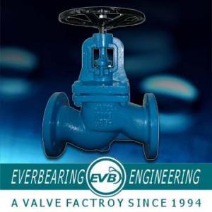 China DIN2533 Flange Drilling Cast Iron Globe Valve , Water Angle Type Globe Valve on sale