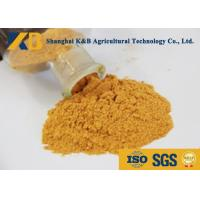 China Plant Corn Protein Powder / Natural Protein Supplements No Visible Impurity wholesale