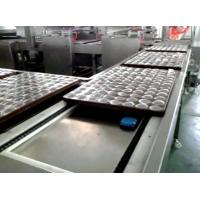 China Bakery Biscuit Making Machine / Small Capacity Fully Automatic Biscuit Machine wholesale