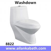 China Middle East Bathroom Sanitary Ware Ceramic S-trap250 Roughing-in Washdown One-piece Toilet wholesale