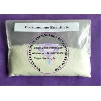 China Muscle Building Steroids Drostanolone Enanthate powder recipe effect wholesale
