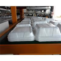 China Disposable Absorbent Styrofoam Tray Making Machine With Robort Arm wholesale