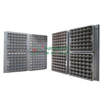 China 30 Holes Extrusion Egg Tray Or Carton Pulp Mold with CAD Design wholesale