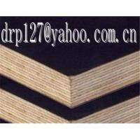 China Offer black film face plywood(skype:ding0127) from china wholesale