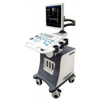 China 3D Trolley Color Doppler Ultrasound Scannery Ultrasongraphy Machine on sale