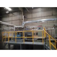 China 200kgs / Hour Rotary Molded Pulp Packaging Machinery For Making Shoes Inserts wholesale