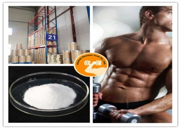 Quality Bodybuilding Test Sustanon 250 CAS 5949 44 0 White Or Pale Yellow White Crystalline Powder for sale