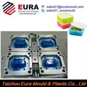 China EURA Plastic Square Food Storage Box Mould, Thin-Wall Crisper Mold wholesale