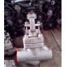 China BSPP/F11 Full Bore Globe Valve API602/forged steel globe valve class 800/Forged Flanged Ends Globe Valve/NPT globe valve wholesale