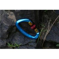 China Colorful Stainless Steel Mini Locking Carabiner wholesale