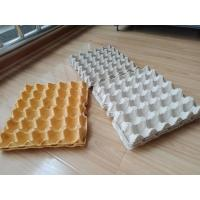 China Hot Pressing Pulp Molding Machine , Egg Tray Production Line With Germany Valves on sale