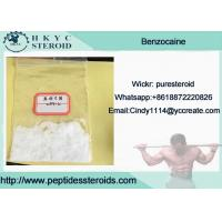 China Benzocaine HCL Powder For Heal Wounds , Benzocaine Hydrochloride For Pain Relief wholesale