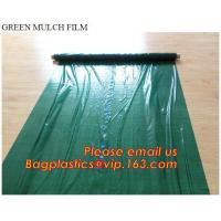 China Good quality plastic mulch/Greenhouse packaging mulch jumbo rolling agriculture black plastic film on sale