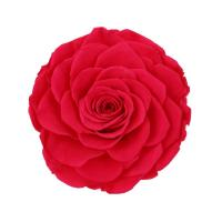 China Home Decor Preserved Rose Heads Creative Household Decorative Furnishings wholesale