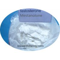 China White Powder Anabolic Steroids Testosterone Mestanolone For Male Body Building 521-11-9 on sale