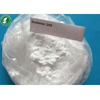 China Testosterone Sustanon 250 Injectable Anabolic Steroids Powder For Bodybuilding wholesale