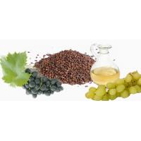 Cold Pressed 100% Nature Grape Seed Oil for Massage Use