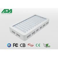 China 300W Agriculture LED Lights Full Spectrum UV IR Working 16 Hours A Day Replace Of HPS MH wholesale