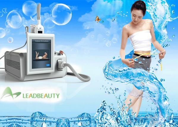 Quality Kryolipolyse Weight Loss Beauty Machine with one Cryo Cooling Handle Cryolipolysis Home Salon for sale