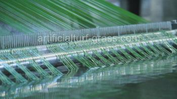 All Victory Grass (Guangzhou) Co., Ltd