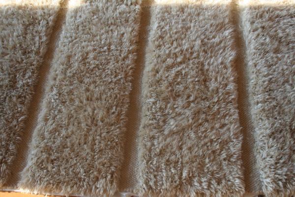 Cleaning A Carpet Images Ideas Gt Tile Design