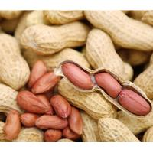 China new crop, Raw peanut in shell, Red skin peanut on sale