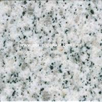 China Granite Slabs and Tiles - White Sesame wholesale