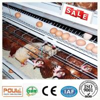 China Durable Galvanized Laying Hen Chicken Cage System From Poul Tech wholesale