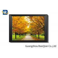 China SGS 3D Lenticular Printing Black And White Landscape Pictures For Home Decorative Wall Art Framed on sale