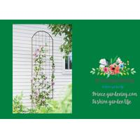 China Metal Wall Garden Flower Trellis Powder Coated For Climbing Flowers wholesale