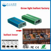 China High quality 250W/220V HPS Electronic Ballast on sale on sale