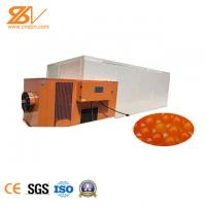 China Food Yolk Industrial Hot Air Dryer  / Industrial Fruit Dryer Machine CE Certification wholesale