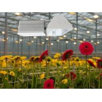 China Easy Installation Plant Grow Lights 630W Low Frequency Ballasts With Soft Start wholesale