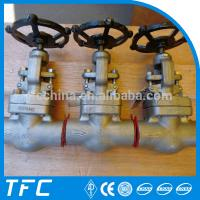 China hastelloy plug disc forged steel globe valve on sale
