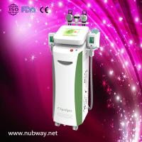 Super fast Vertical amazing result cryolipolysis lipolaser machine to losing weight