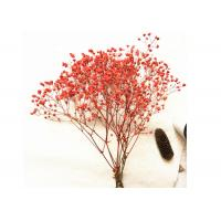 Decorative Pressed Wedding Bouquet , Dried Flower Bouquet True Plant For Dining Room