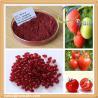 China Natural Tomato Extract lycopene wholesale