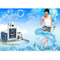 China LEADBEAUTY Cryolipolysis slimming machine with one cryo handle to remove fat for spa and clinic use wholesale