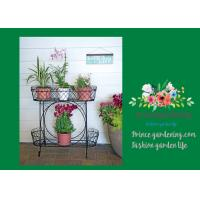 China Herbs Graceful Metal Plant Stands / Ladder Plant Stand Powder Coated wholesale