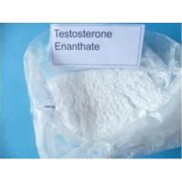 China Body Building Testosterone Anabolic Steroid Testosterone Enanthate 250 Test E 600 CAS 315-37-7 wholesale