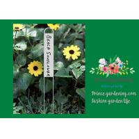 Durable Silver Metal Garden Plant Markers With Vertical Name Plates