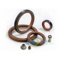 Automobile Rubber Parts Standard & Nonstandard Rubber Oil Seal