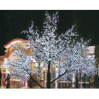 China 180W/260w red/green/blue/yellow/purple christmas tree lights outdoor for Home wholesale