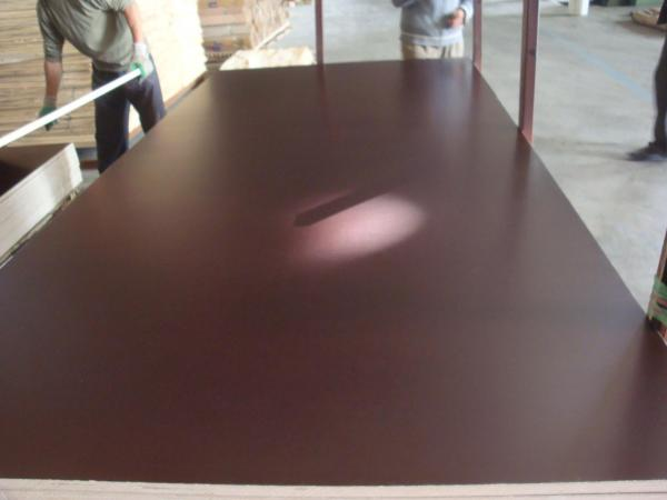 Quality 1220*2440, 1250*2500mm, 1500*3000mm MARINE PLYWOOD & film faced shuttering plywood 12mm for sale