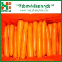 China Fresh Red Carrot wholesale