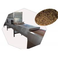 China Microwave Industrial Drying Equipment , Continuous Belt Dryer For Black Soldier wholesale