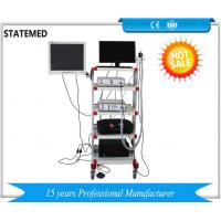 China Medical Endoscopy Camera System With Led Light Source / Endoscopy Trolley wholesale