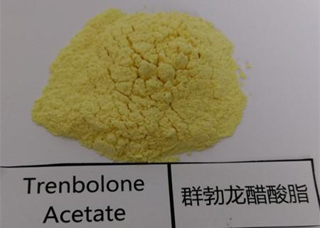 Quality CAS 10161-34-9 Trenbolone Acetate 100mg / Ml Injectable Liquids Finaplix Steroids for sale