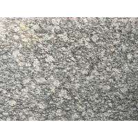 China Spary White Polished Granite Floor Tiles Fashionable Appearance wholesale