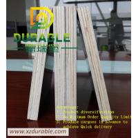 China China best quality  plywood factory / Black  Film faced shuttering plywood E2 Glue Poplar Core 18MM wholesale